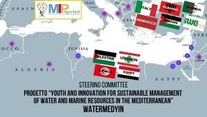 "Steering Committee del progetto ""Youth and innovation for sustainable management of water and marine resources in the Mediterranean"" - WaterMedYin"